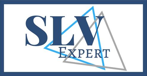 logo-slv-expert